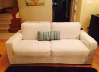 Loveseat_and_Striped_Pillow